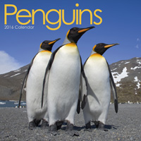 Penguins 2016 Wall Calendar