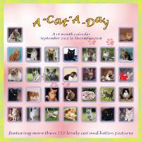 A Cat A Day Wall Calendar 2016