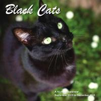 Black Cats Wall Calendar 2016
