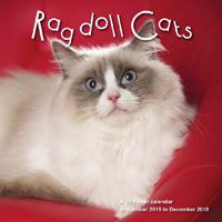 Ragdoll Cats Wall Calendar 2016