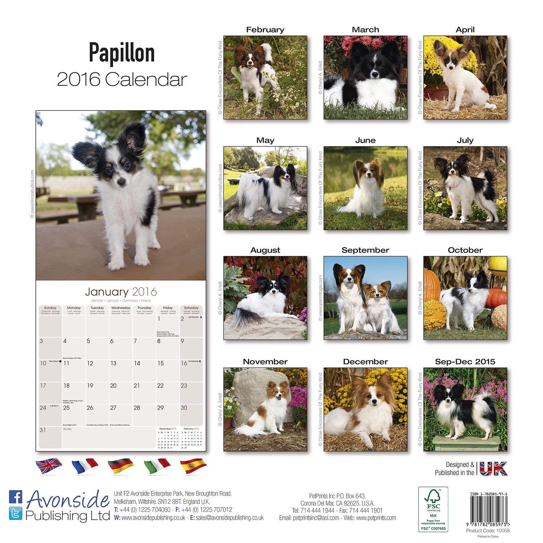 Dog Food Brand Crossword