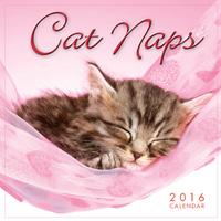 Cat Naps Mini Wall Calendar 2016