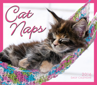 Cat Naps Page-A-Day Calendar 2016