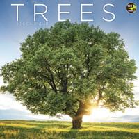 Trees Wall Calendar 2016