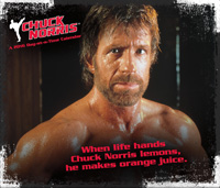 Chuck Norris Page-A-Day Calendar 2016